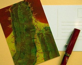Desert Cactus Postcard