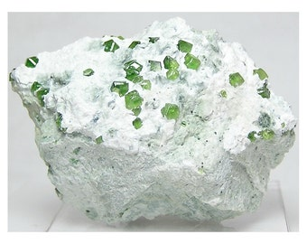Green Demantoid Garnet Gem Crystals in Snow White Matrix Quebec Geological Specimen for the Top Drawer of your rock and mineral collection