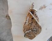LARGE Hells Canyon Petrified Wood Silver Wrapped Pendant