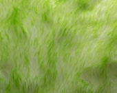 Faux Fake Fur Arctic Hare Lime 60 Inch fabric by the yard, 1 yard