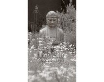 Garden Buddha Photo, Black and White, White Flowers, Meditation, Serenity, Quiet Garden