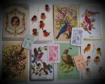 12 Vintage Bird Playing Card Lot