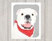 English Bulldog - Dog Art Print