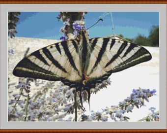 Black And White Butterfly Cross Stitch Pattern