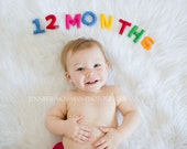 Baby Chronicle Kit - Stuffed Felt Letters and Numbers. (all numbers 1-12 plus a word: MONTHS OR YEAR)