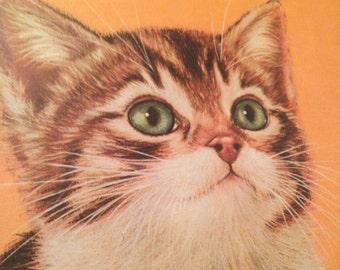 Framed Kitten Lithograph Print By Robert Guzman Forbes
