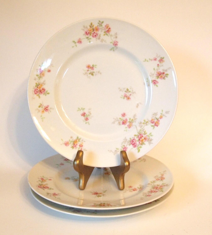 Antique China Dinner Plates Limoges France B Amp C Porcelain Circa