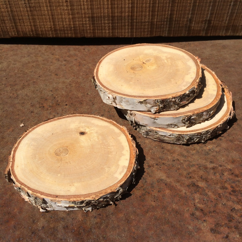 White Birch Log Slice Coaster Set Of 4 Rustic Natural