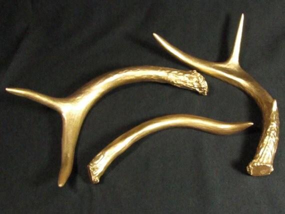 Metallic Gold White Tail Deer Antlers Modern Antler Decor