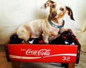 Coca-Cola Crate Pet Bed/ Authentic Vintage Coke Crate/ Newborn Photo Prop/ Soda Box Event and Party Display/ Dog & Cat Nap Box/