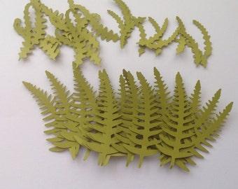 40 Die Cut Sage Green Fern Leaves (930)