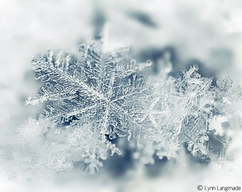 "Winter Photography - snowflake wall art nature photography blue Christmas holiday decor, winter wall art white 8x10 11x14 5x7 - ""Crystal"""