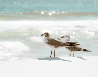 Beach - blues - sea - fine art photography - Waves - Ocean - Birds