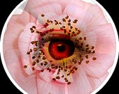 A36 Glass Cabochon - Pink Flower with Eye Detail