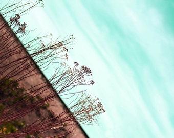 Teal Sky Fine Art Print* Photography Fine Art Large Wall Decor Print Teal and Brown Home Decor