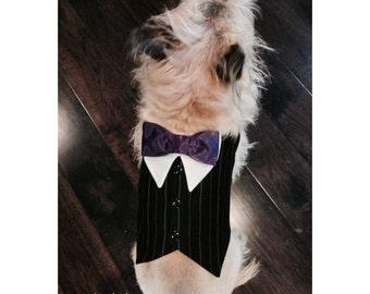 Black pinstripe dog tuxedo