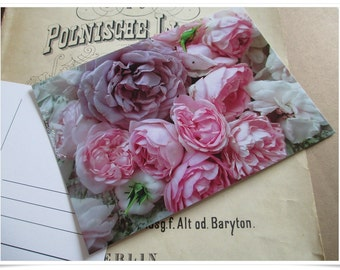 "post card ""roses"""