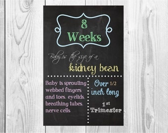 ALL 16 COLOR Printable File Pregnancy Chalkboard  Weeks - from 1st, 2nd, 3rd  Trimester size 8x10 and 11x17