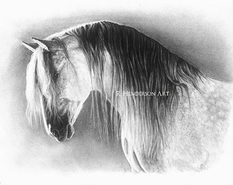 State of Grace - Andalusian Horse *Limited Edition Giclée Print*