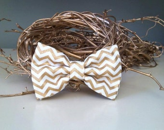 Dog Bow / Bow Tie - Cream and Gold Chevron