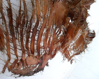 LARGE Palm fiber sheets, natural dried botanical for collage, sculpture...Anything you can imagine...