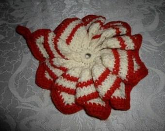 Hand Crocheted Pot Holder