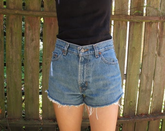 Cheeky Vintage High-Waisted Shorts Size 5