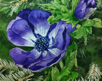 Purple Anemone - unframed original watercolour