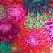 JAPANESE CHRYSANTHEMUM Scarlet Red PJ41 Philip Jacobs Kaffe Fassett fabric Sold in 1/2 yd increments