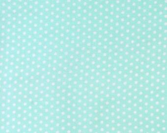 Pond Tiny Dots, Spot On, from Robert Kaufman