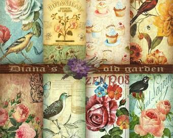 Digital Scrapbook Paper Floral. Floral Digital Paper. Floral Digital Image. Digital Paper Floral. Floral Download. Floral Backgrounds DG-24