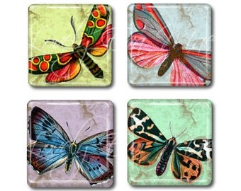 Set of 4,Vintage Butterfly & Moth Magnets, Glass Tile Magnets, Glass Magnets, Refrigerator Magnets, Fridge Magnets