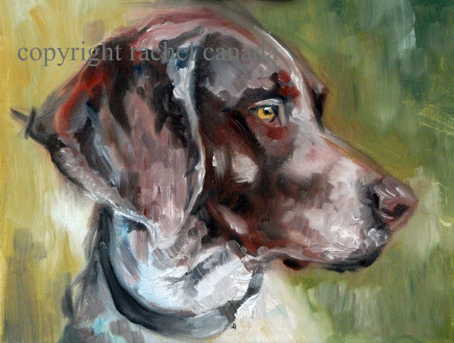 German shorthaired pointer dog art oil painting print for Dog painting artist
