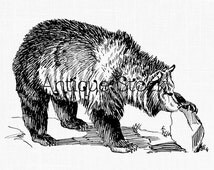 Bear Digital Download Image - Grizzly Bear Line Art Illustration for Transfers, Wall Art, Cards, Temporary Tattoos, Collages, Paper Crafts..