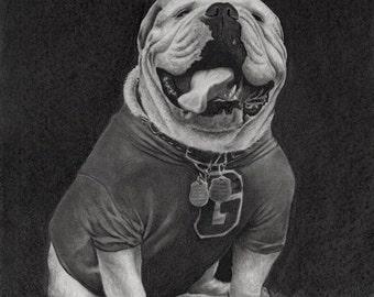 """Charcoal giclée print of """"UGA"""""""