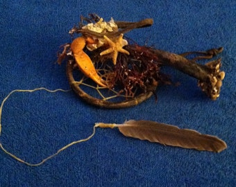 Dream Catcher. Made from shells, driftwood and other seashore materials