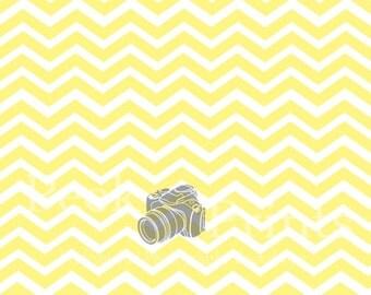 4ft.x3ft Mellow Yellow Chevron Vinyl Photography Backdrop