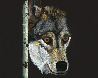 Print of an original pastel drawing of a wolf