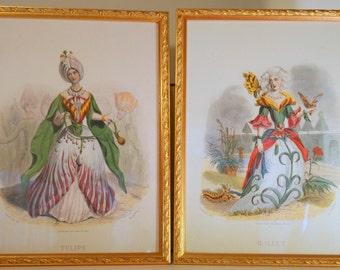"""2 JJ Grandville """"Les Fleurs Animees"""" Steel Engravings by Ch Geoffroy Prints Tulipe & Oeillet Framed prints from 1800's"""