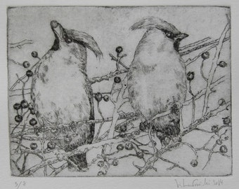 Drypoint etching - Waxwings