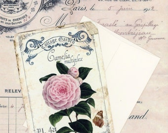 Blank Note Cards , Flat Cards , Vintage Style Note Cards , Camellia Note Cards , Cottage Garden Cards , Pink Flower Cards