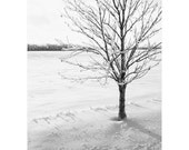 Tree Art - Black and White Art Prints - Winter Landscape Photography - Nature Photography - Vertical Office Art - Extra Large Wall Art