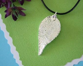 Silver Evergreen Leaf, Real Leaf, Evergreen, Evergreen Leaf, Sterling SIlver, LL11