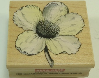 Magnolia Bloom Wood Mounted Rubber Stamp By Hero Arts E1979