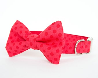 Bowtie Dog Collar - Red on Red Polka Dots