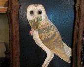 Barn Owl With Fairy- Original Acrylic Painting