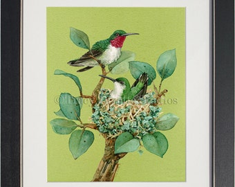 Organic Living- an archival watercolor print by Tracy Lizotte
