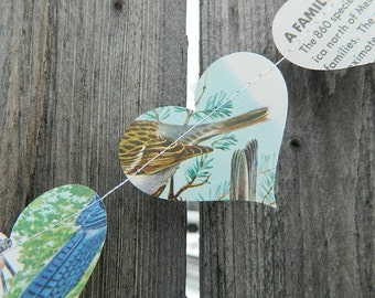 Paper Heart Garland - Vintage Field Guide to Birds - 20 Feet Long - Fun Classroom Decoration - Birthday Party Supplies