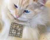 Cat's PAW Pendant using Gaia's cat hair