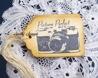 Picture Perfect Camera Tags, Vintage Look